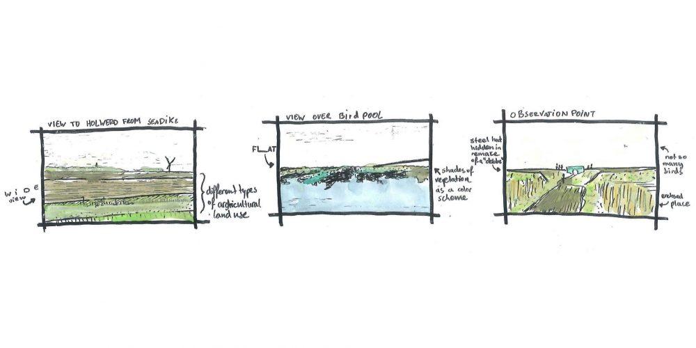 III Mainland marsh: sequence