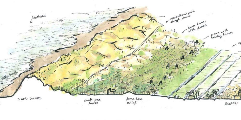 I Island dunes: overview