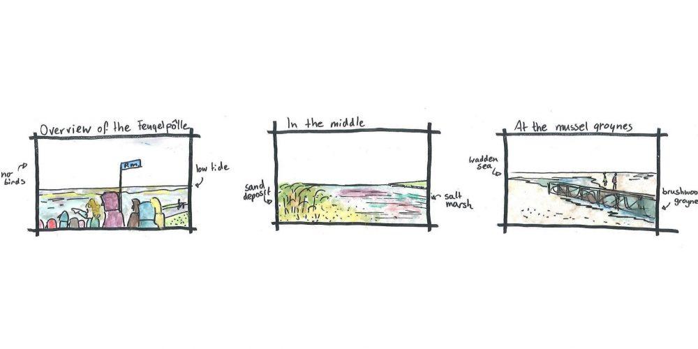 II Island marsh: sequence